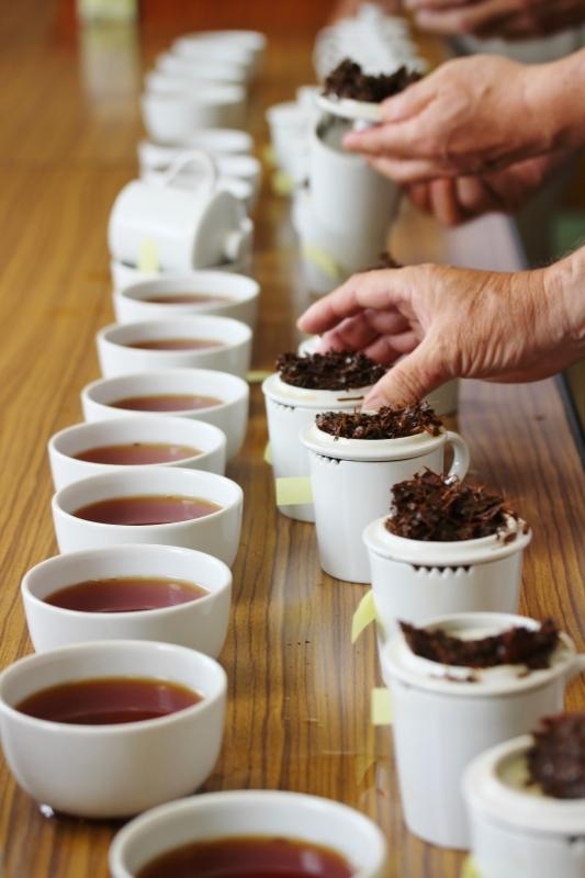 試験場で紅茶製造+いろんなこと_b0220318_10343312.jpg