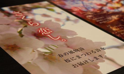 「野の花びより」フォトポエム展_a0329820_15075585.jpg