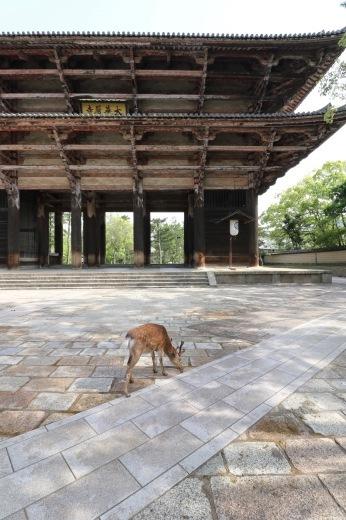 奈良県 建築ツアー 2日目_f0165030_09011182.jpg