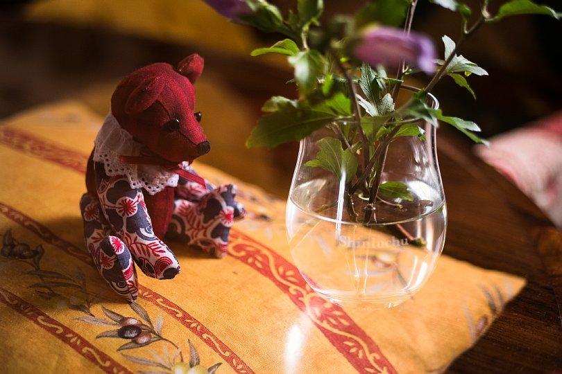 Teddy Bears Dissolved In Summer Illusion_d0353489_17053585.jpg
