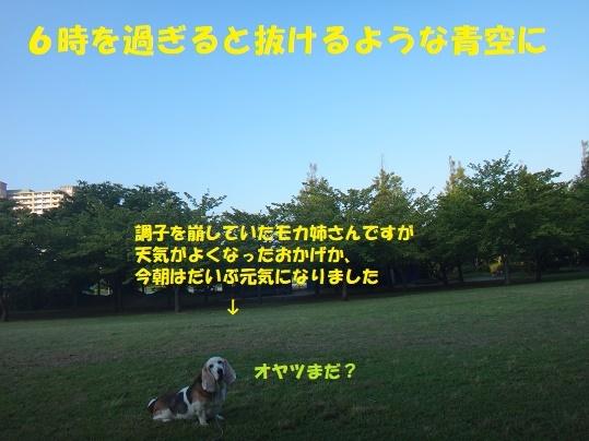 f0121712_09330284.jpg