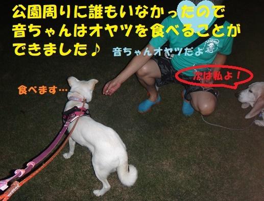 f0121712_10111719.jpg