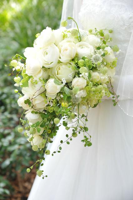 卒花嫁様アルバム マリオットホテルの花嫁様より、桜のころ、先生に_a0042928_21130603.jpg
