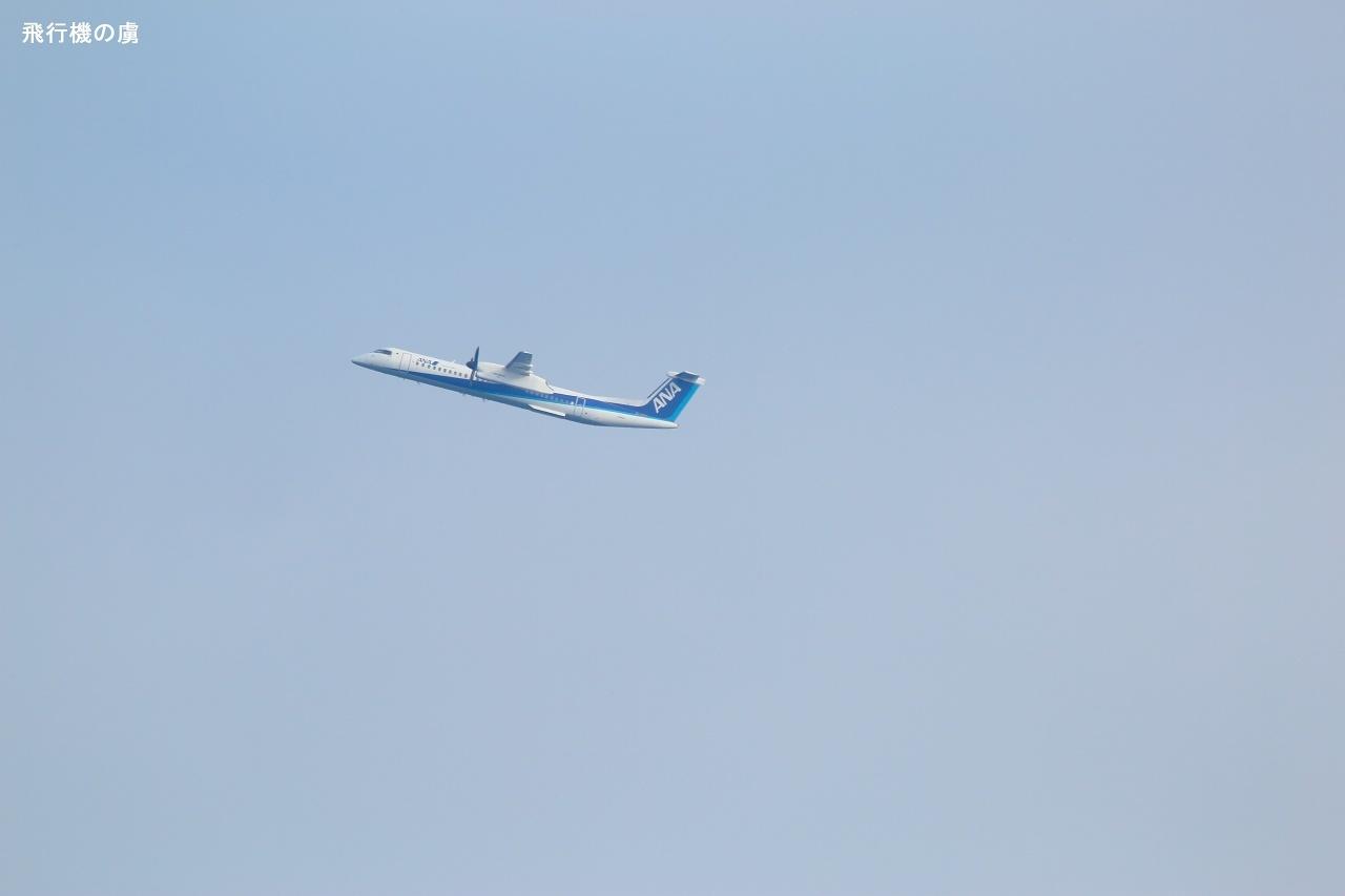 早い上がりで  DHC-8  ANAウイングス(EH)_b0313338_17145057.jpg