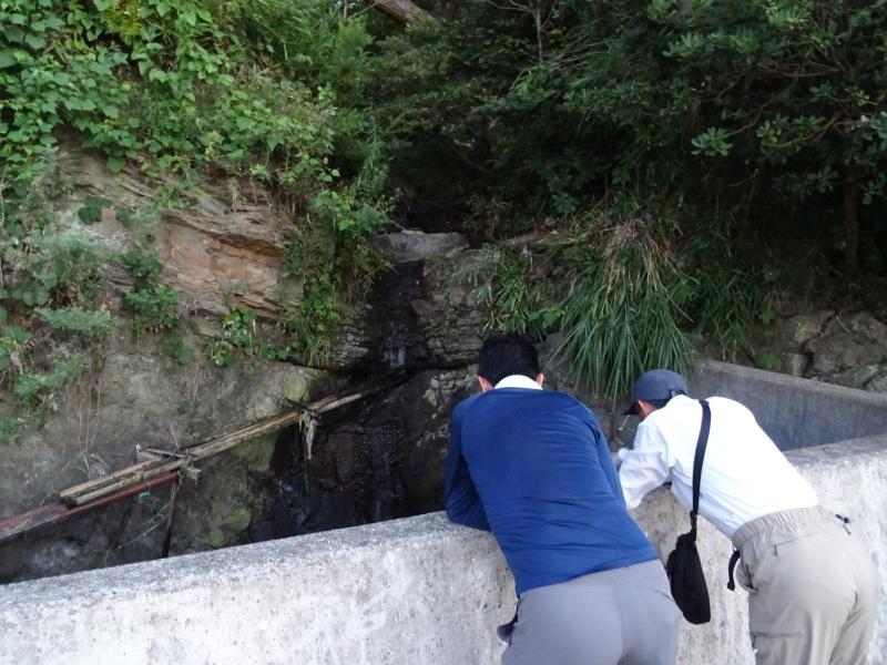 「カニ放仔観察会」リハーサル・・・せんなん里海公園内あふれ滝_c0108460_23115044.jpg