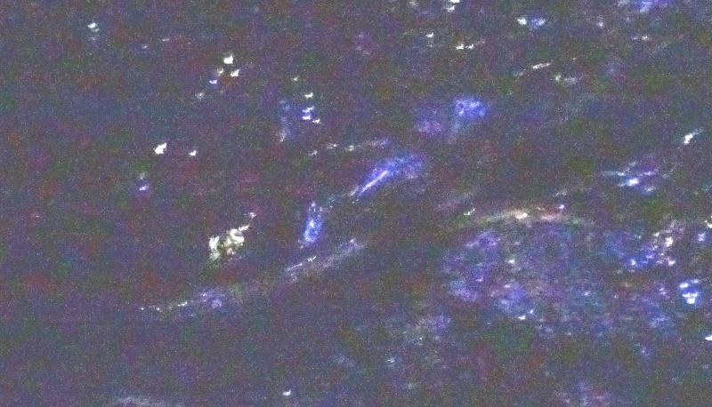 「カニ放仔観察会」リハーサル・・・せんなん里海公園内あふれ滝_c0108460_23241959.jpg