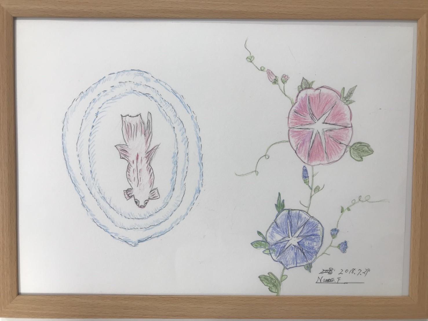 Nanaeギャラリー part36 〜朝顔&金魚〜_f0283066_17512355.jpg