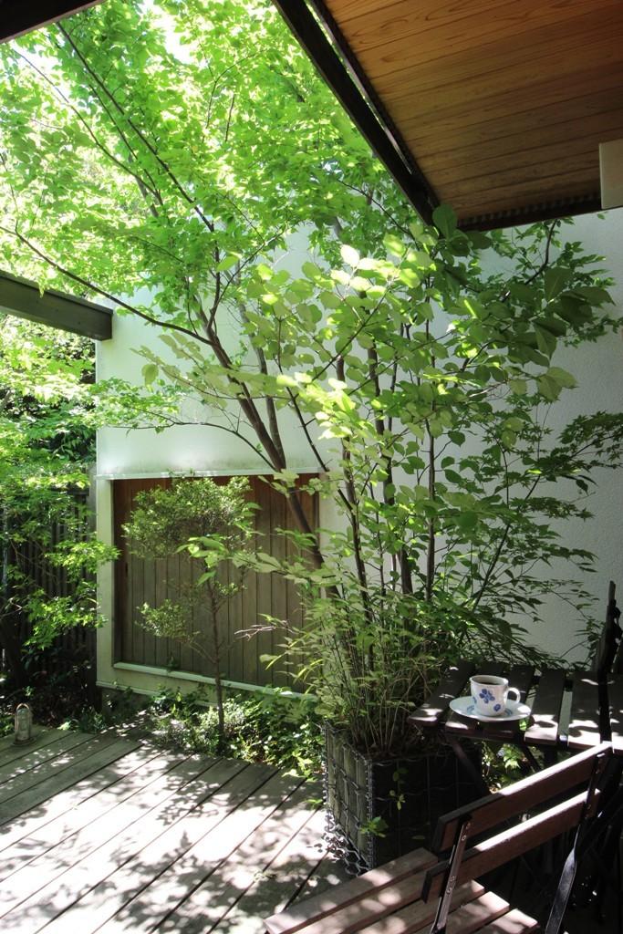 庭の樹木_c0310571_21190123.jpg