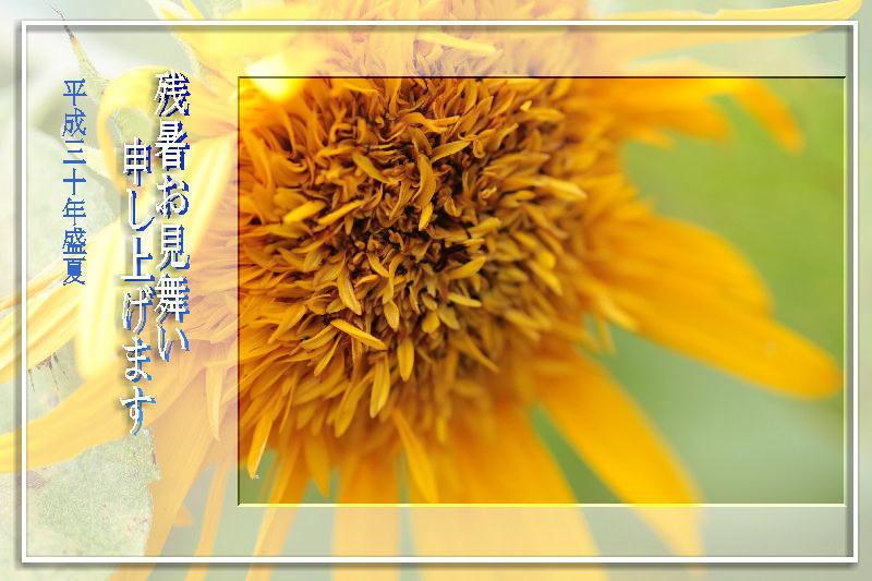 f0164592_19361895.jpg