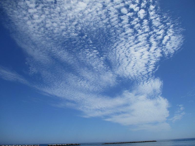 8月11日(土)・・・夏の海_f0202703_21040234.jpg