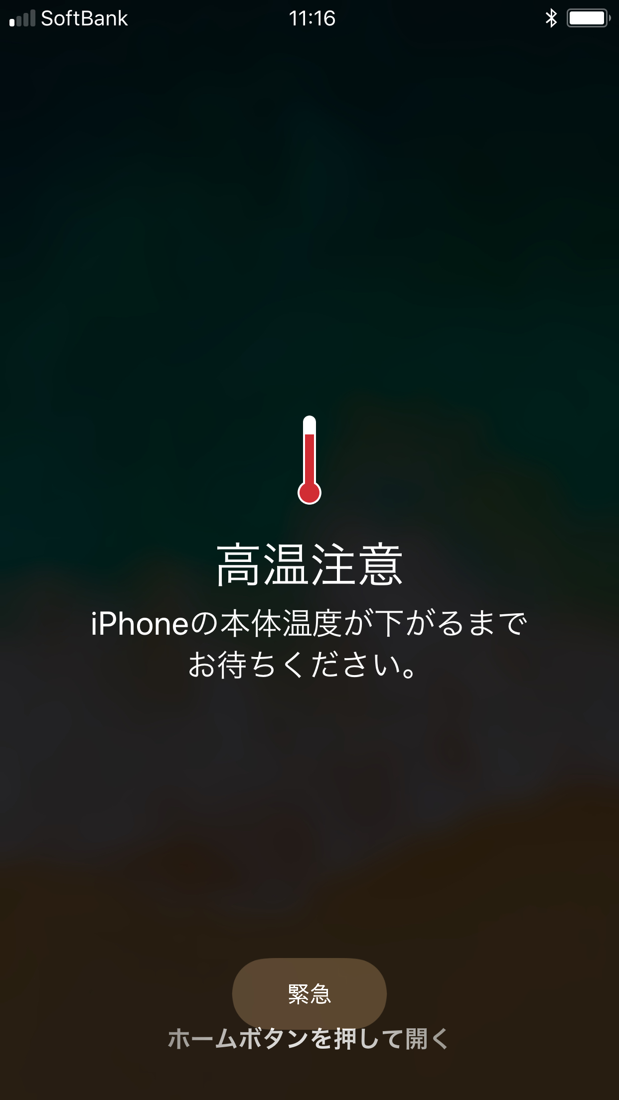 c0133351_16491938.jpg