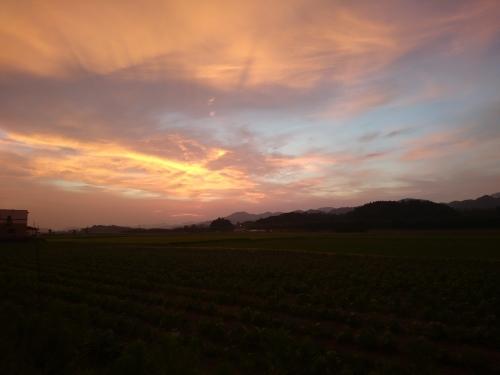 兵庫県神河町まで往復200㎞のライドに行ってきました_d0174462_00542948.jpg