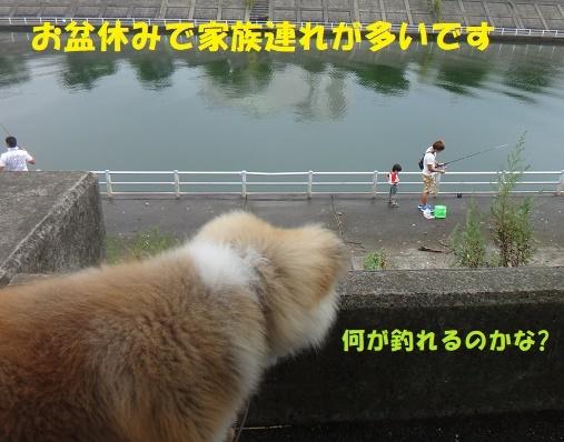 f0121712_15065214.jpg
