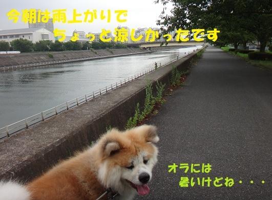 f0121712_15065789.jpg