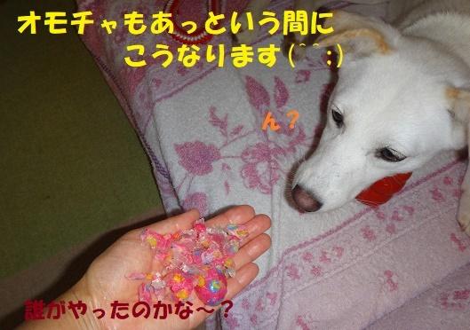 f0121712_15451357.jpg