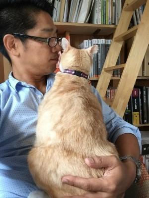 猫と暮らす 3_a0210340_18415113.jpg