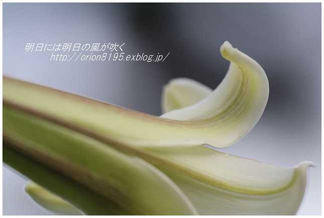 f0361079_19422031.jpg