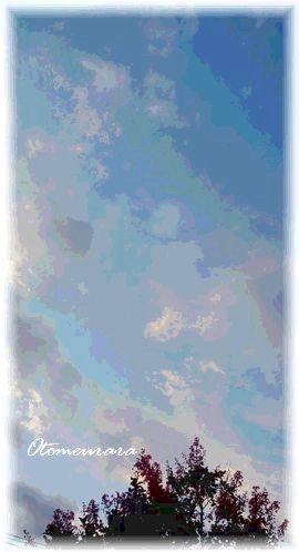 a0287486_0421458.jpg
