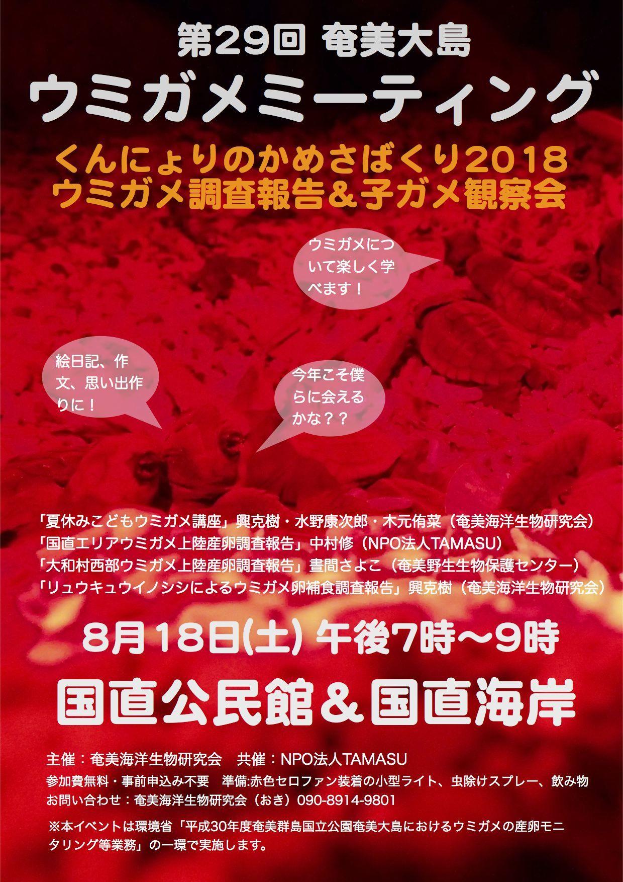8/18 国直ウミガメミーティング開催!_a0010095_08512457.jpg