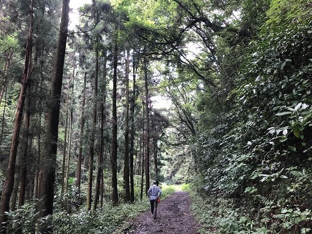 横沢入里山保全地域へ_c0124100_21404817.jpg