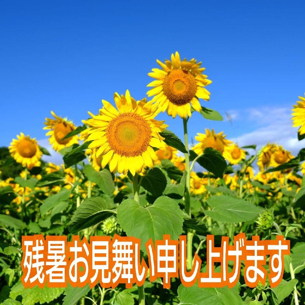 b0133713_14551242.jpg