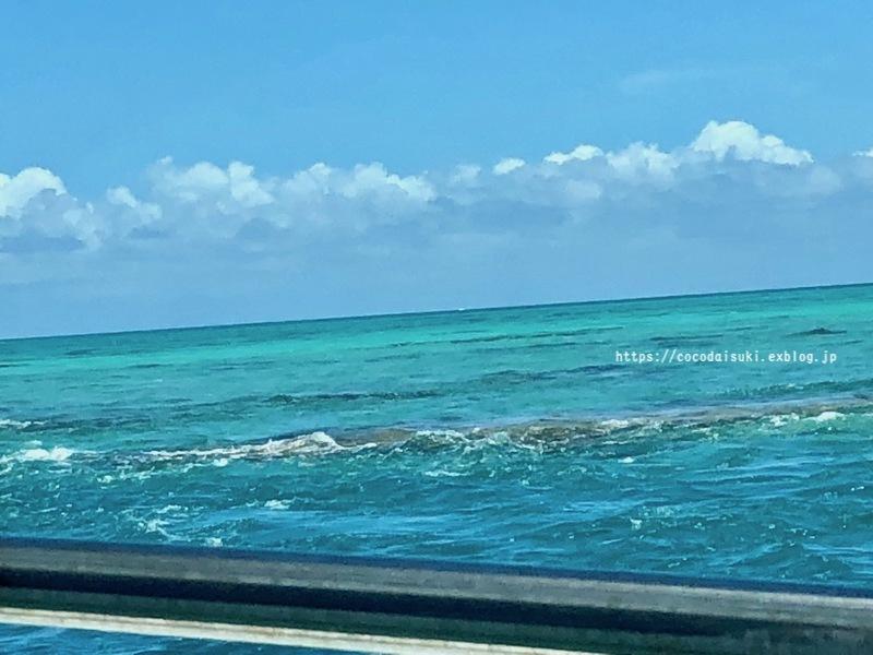南の島へ行ってきました*2018②*3日目♪_d0367763_20332250.jpg