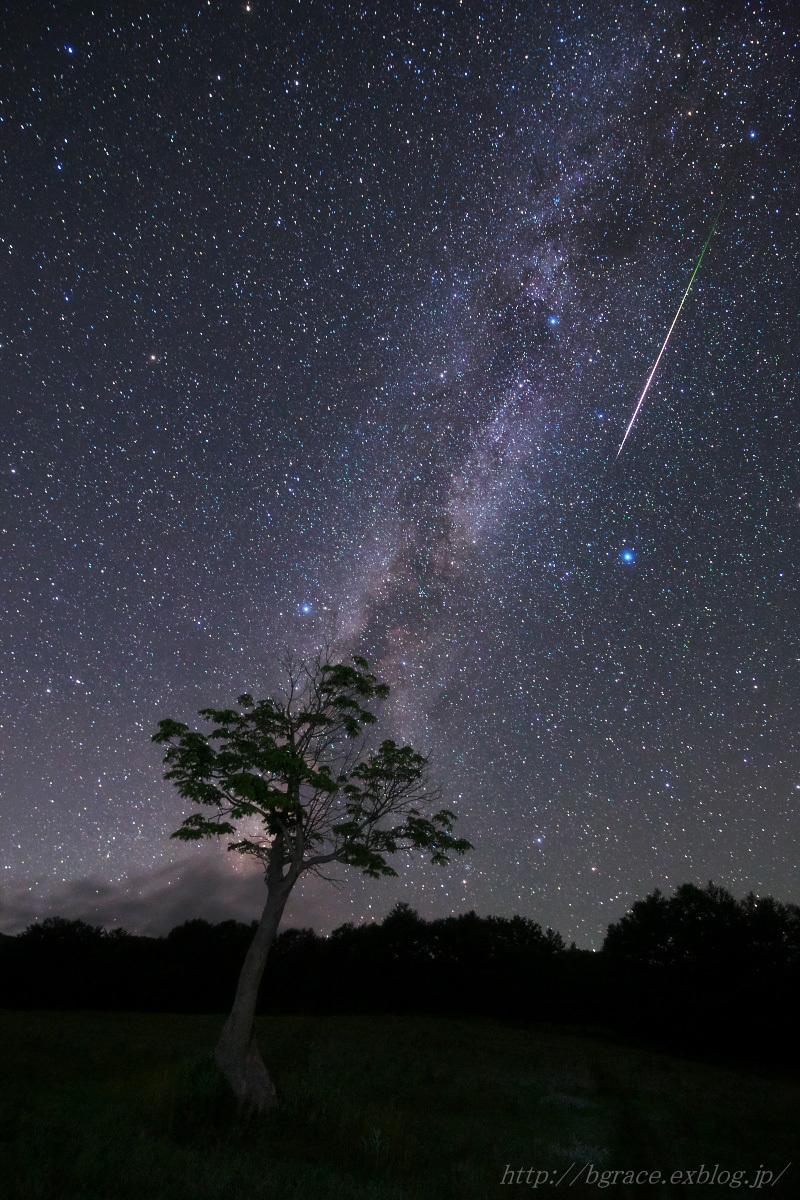 ペルセウス座流星群 2018_b0191074_19180486.jpg