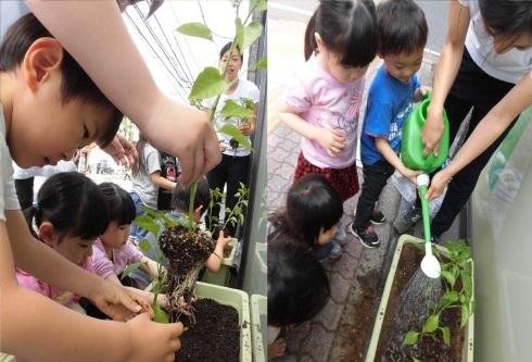 【千葉新田町園】菜園活動とピザ作り_a0267292_09380156.jpg