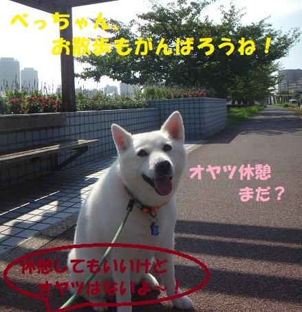 f0121712_08345043.jpg