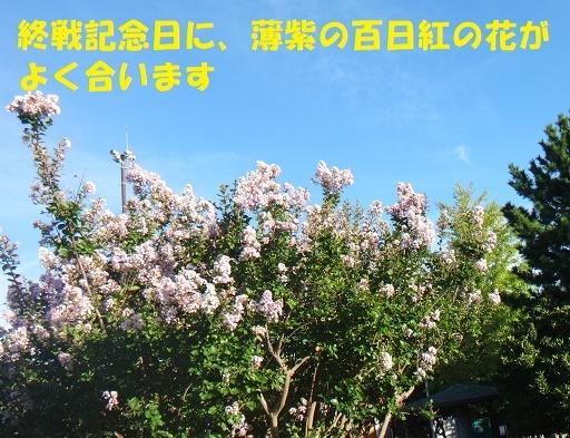 f0121712_10495181.jpg