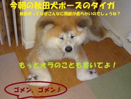 f0121712_11035701.jpg