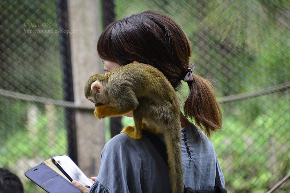 2018.8.15 みんなで愉しむ宇都宮動物園♬_f0250322_20394760.jpg