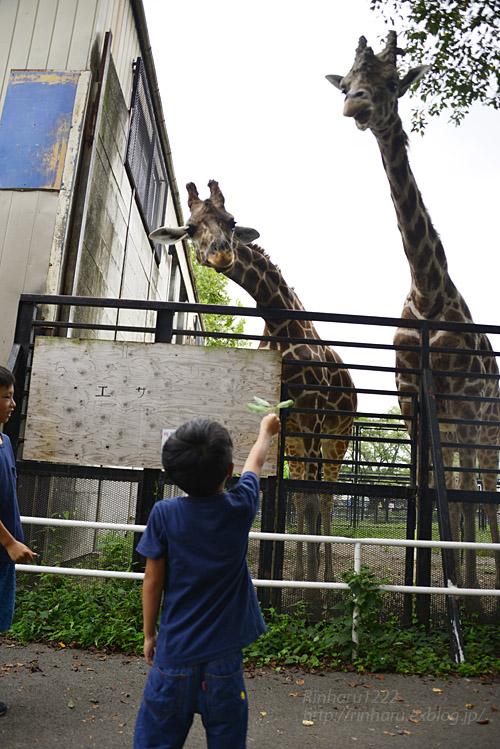2018.8.15 みんなで愉しむ宇都宮動物園♬_f0250322_20401077.jpg