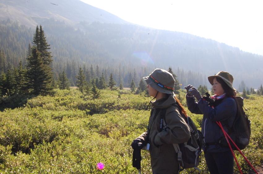 気軽に行ける絶景ハイキング ターミガンサーク_d0112928_11144776.jpg