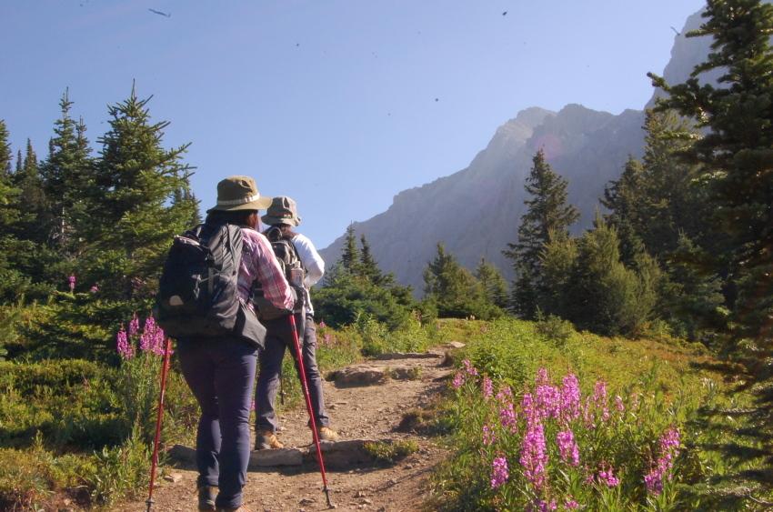 気軽に行ける絶景ハイキング ターミガンサーク_d0112928_11152525.jpg