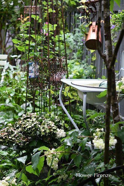 *お盆の庭は・・・*_e0159050_17522598.jpg