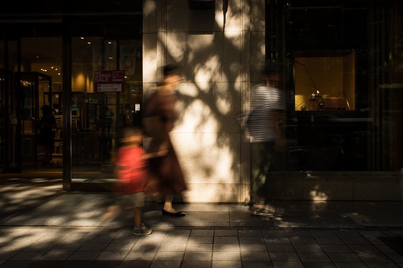 Shadows Carved By Afternoon Light And Boulevard Trees_d0353489_22335090.jpg