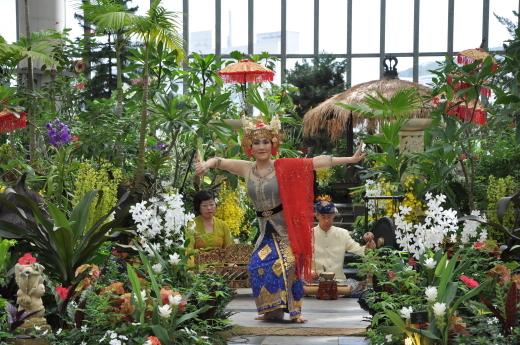 淡路島 奇跡の星の植物館 バリフラワーショー2018 後半のステージ_e0017689_11464351.jpg