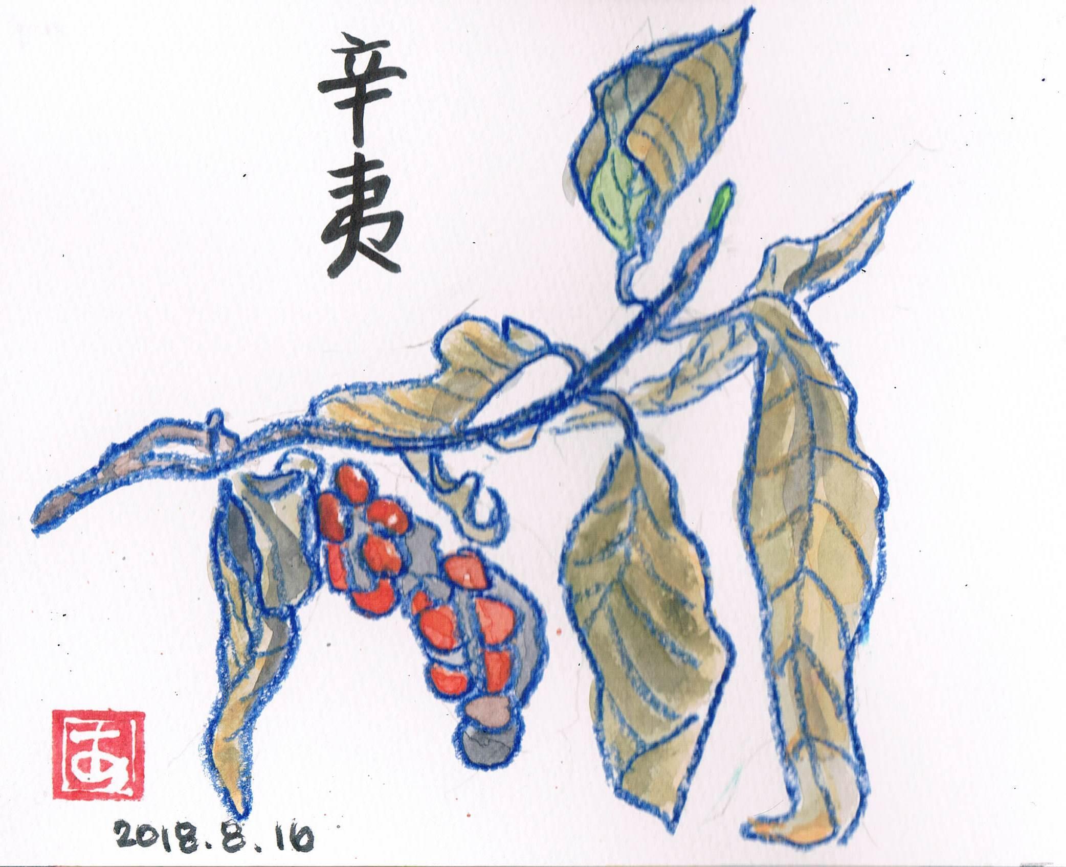 秋の空_e0232277_14561508.jpg