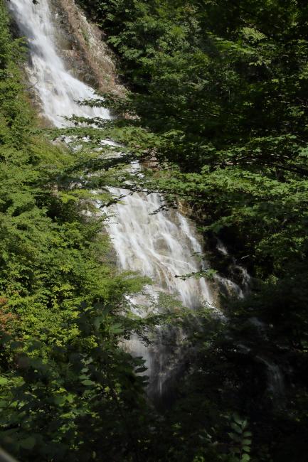 奥四万湖 しゃくなげの滝 _a0357206_21113706.jpg