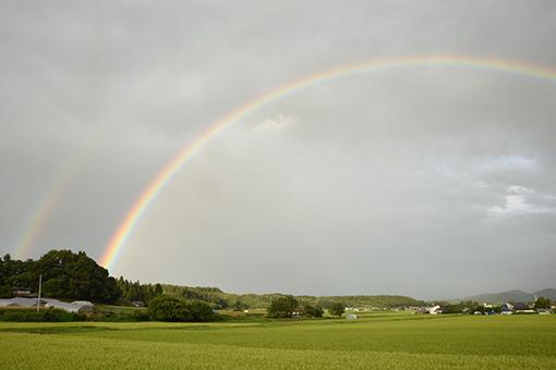 虹とスタンプラリーの木曜日_b0259218_06031326.jpg