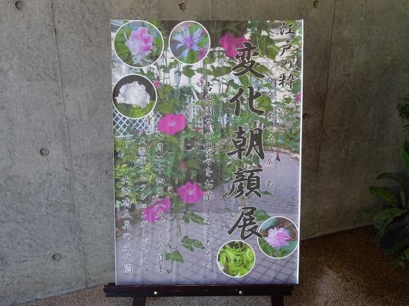 大阪府立花の文化園の花_b0299042_15130314.jpg