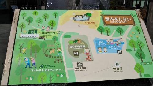山登り②御岳山  楽チンコース_e0341099_10241987.jpg