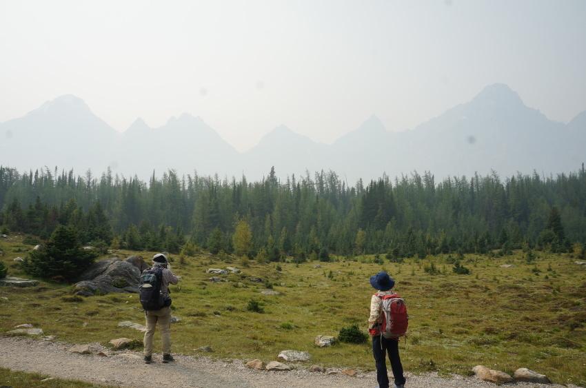 山岳救助の一部始終を見た ラーチバレー_d0112928_03093228.jpg