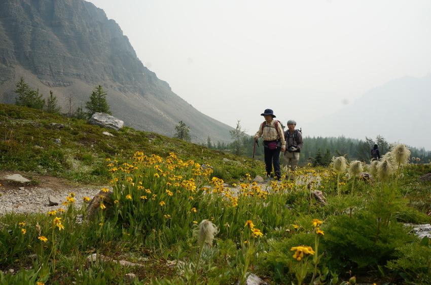 山岳救助の一部始終を見た ラーチバレー_d0112928_03120630.jpg