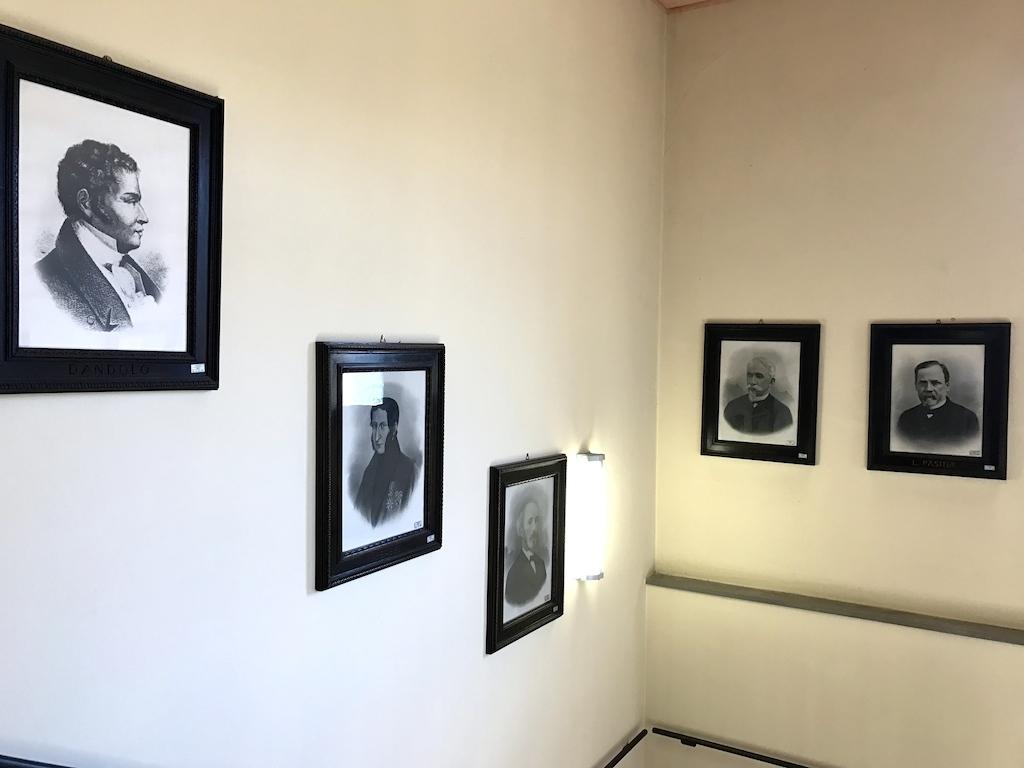 パドヴァの昆虫博物館 Esapolis_a0087957_01323016.jpg