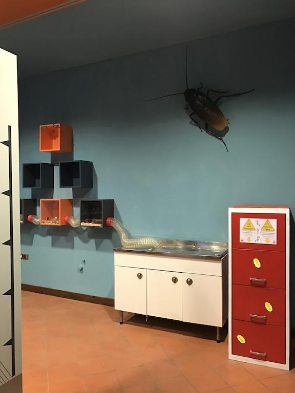 パドヴァの昆虫博物館 Esapolis_a0087957_11014165.jpg