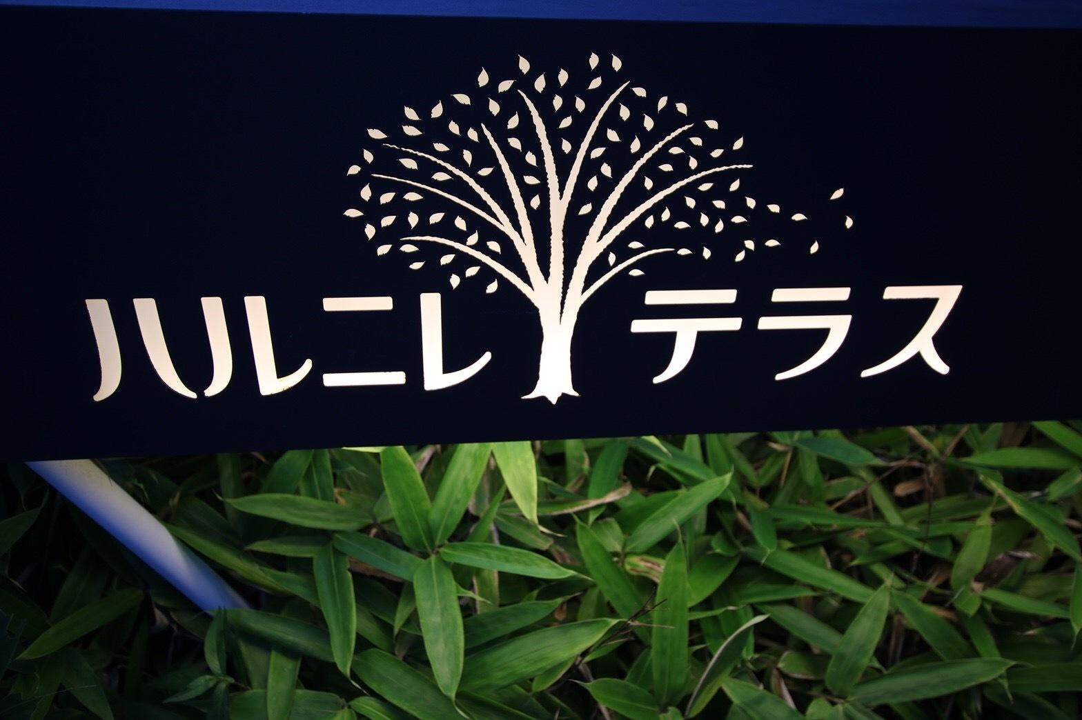 夏の軽井沢はやっぱりいい_a0283796_19280016.jpg