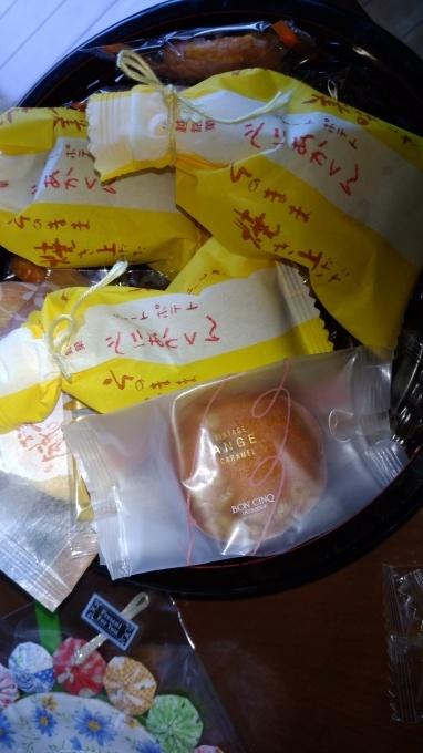 斑入り葉美男カズラ_f0035506_09241622.jpg