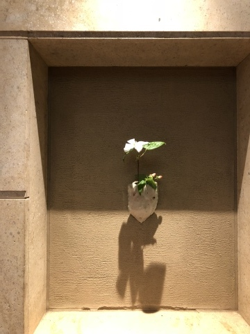 夏の想い出  母娘京都旅 1日目②_a0157409_21502563.jpeg